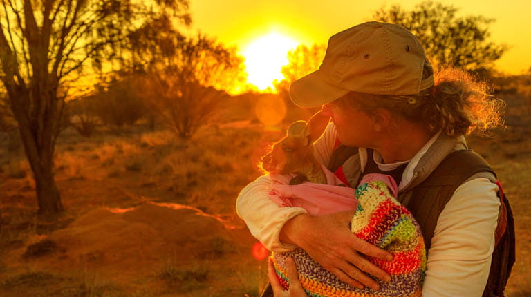 response to bush fires in Australia - woman holds kangaroo