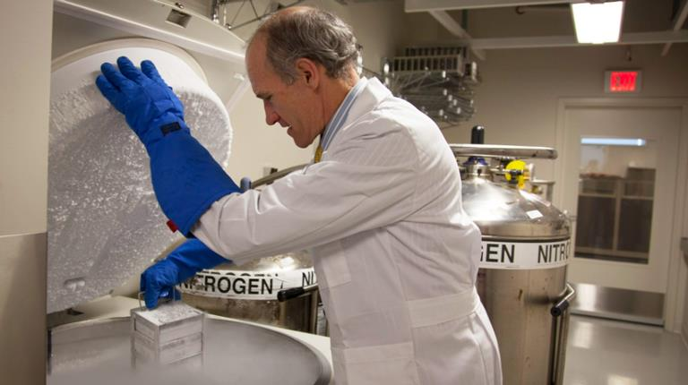 Dr. Carl June works with frozen CAR T cells in the Center for Cellular Immunotherapies at the Abramson Cancer Center of the University of Pennsylvania. (Photo/Penn Medicine)