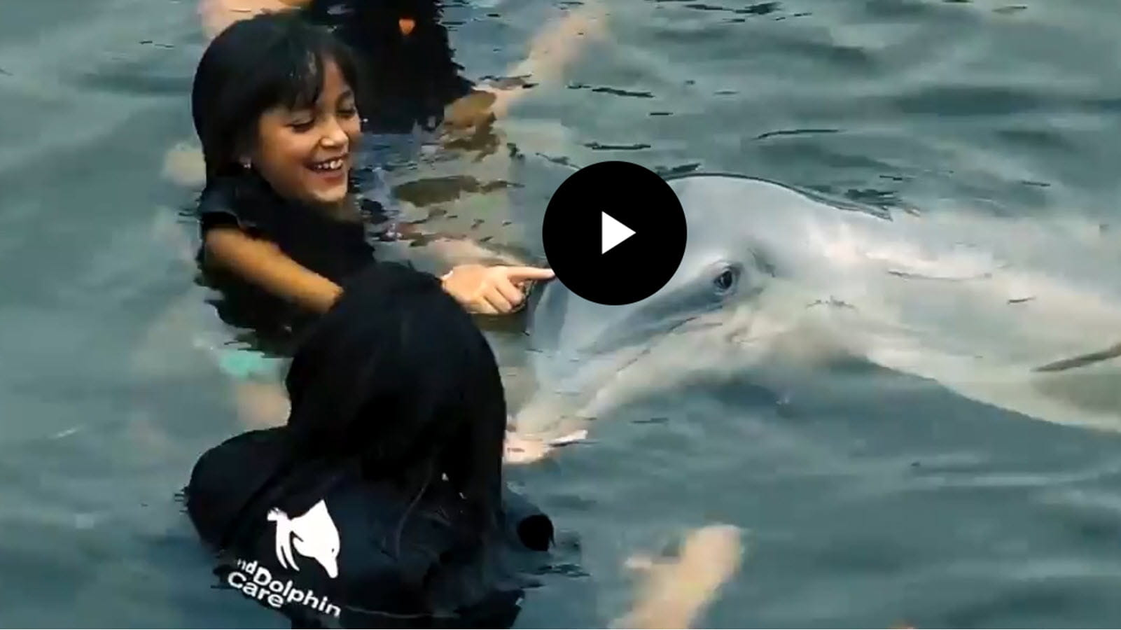 child swims with dolphin