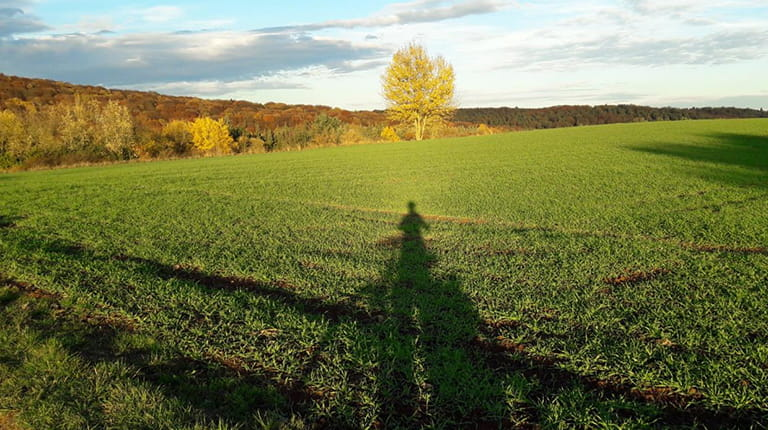 The shadow of CSL Behring employee Vera Isenberg, who commutes to her job at CSL Behring's Marburg, Germany, manufacturing site on a bike.