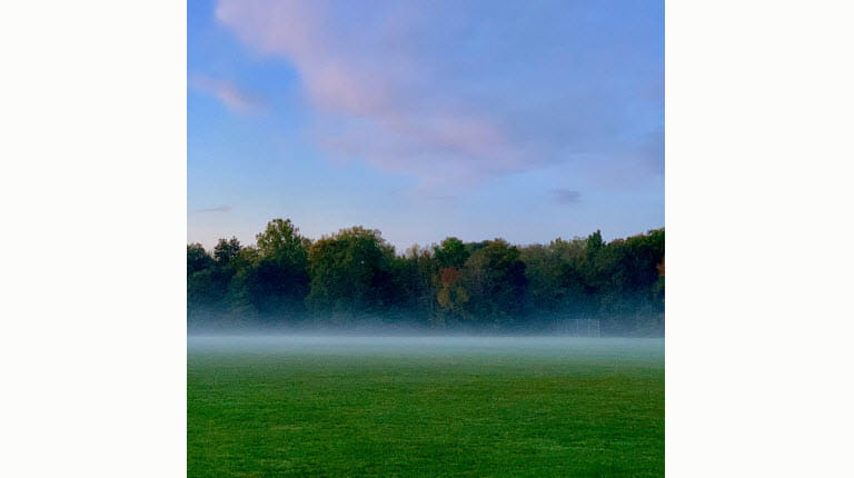 misty field by Richard Lovrich