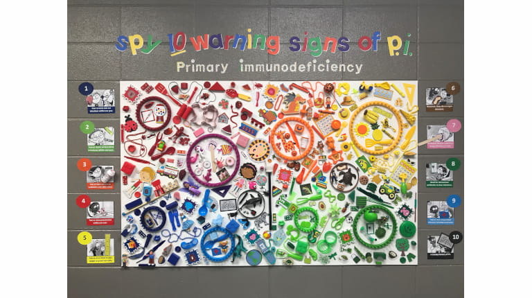 The winning entry for the Jeffrey Modell Foundation's (JMF) bulletin board contest. The inventive display hid objects representing the 10 warning signs of primary immunodeficiency in a 3-D look-and-find scene.