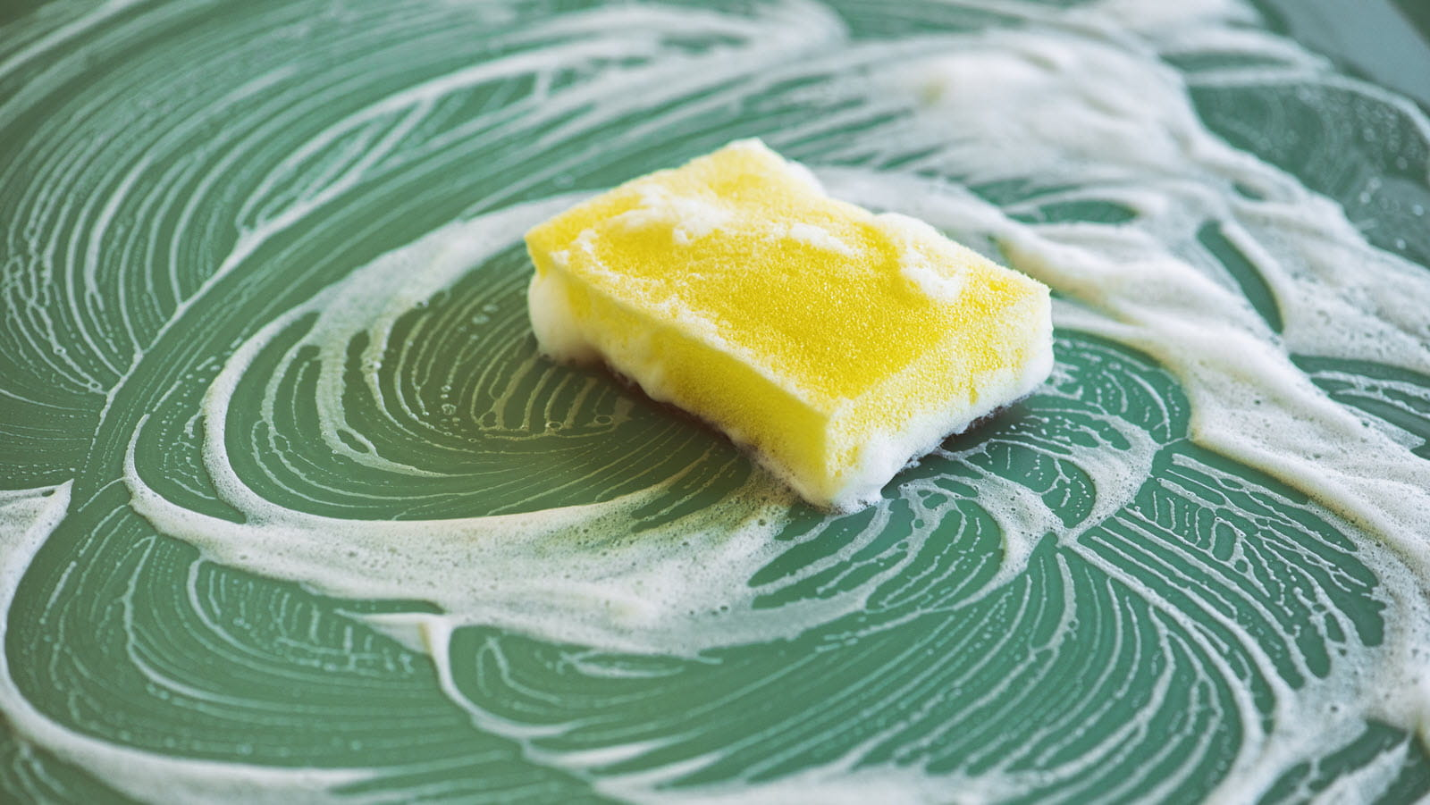 yellow sponge with suds on a green countertop