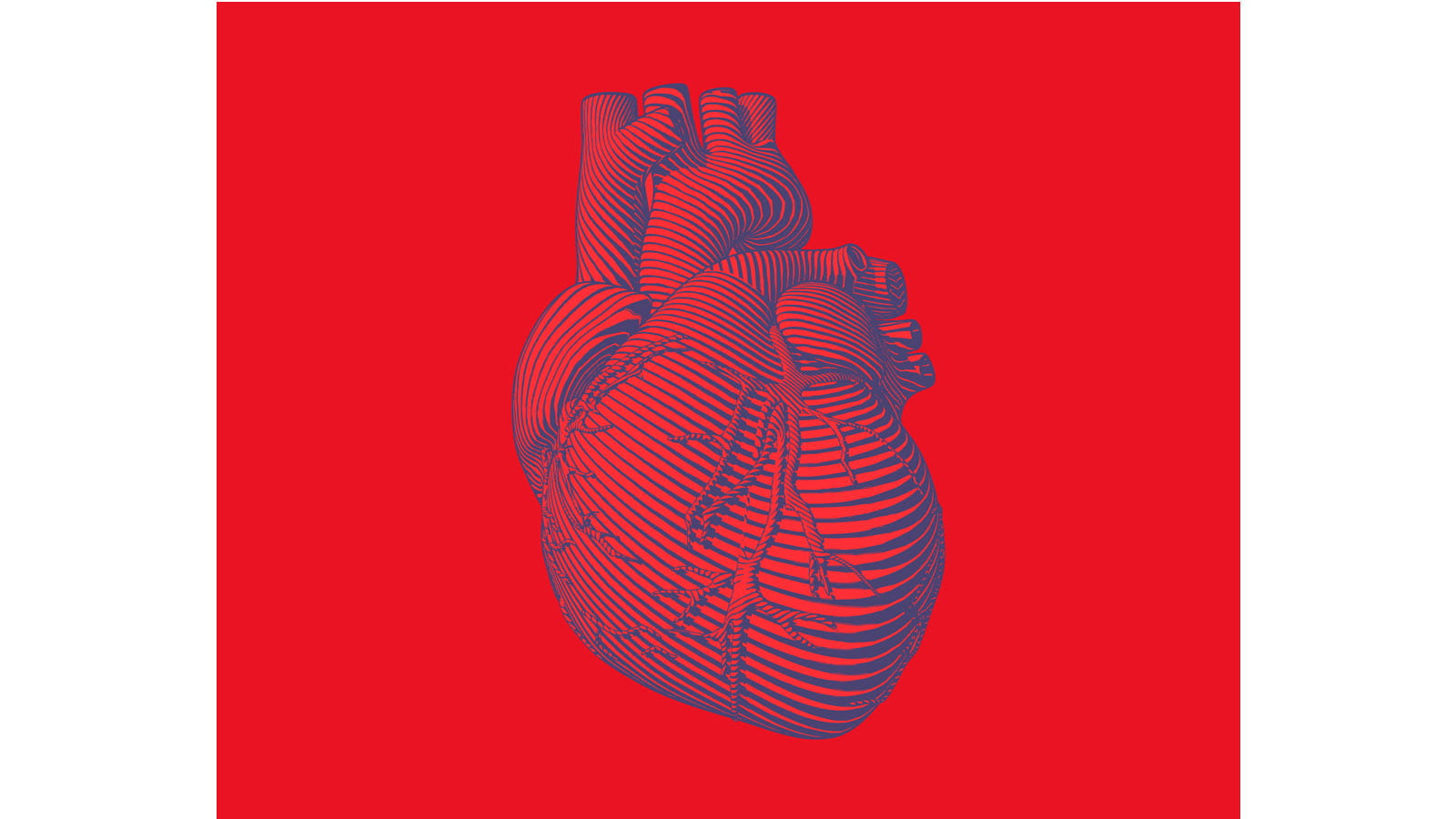 anatomical heart in blue on red background