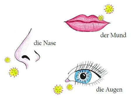 nose, mouth and eyes - illustration from children's book