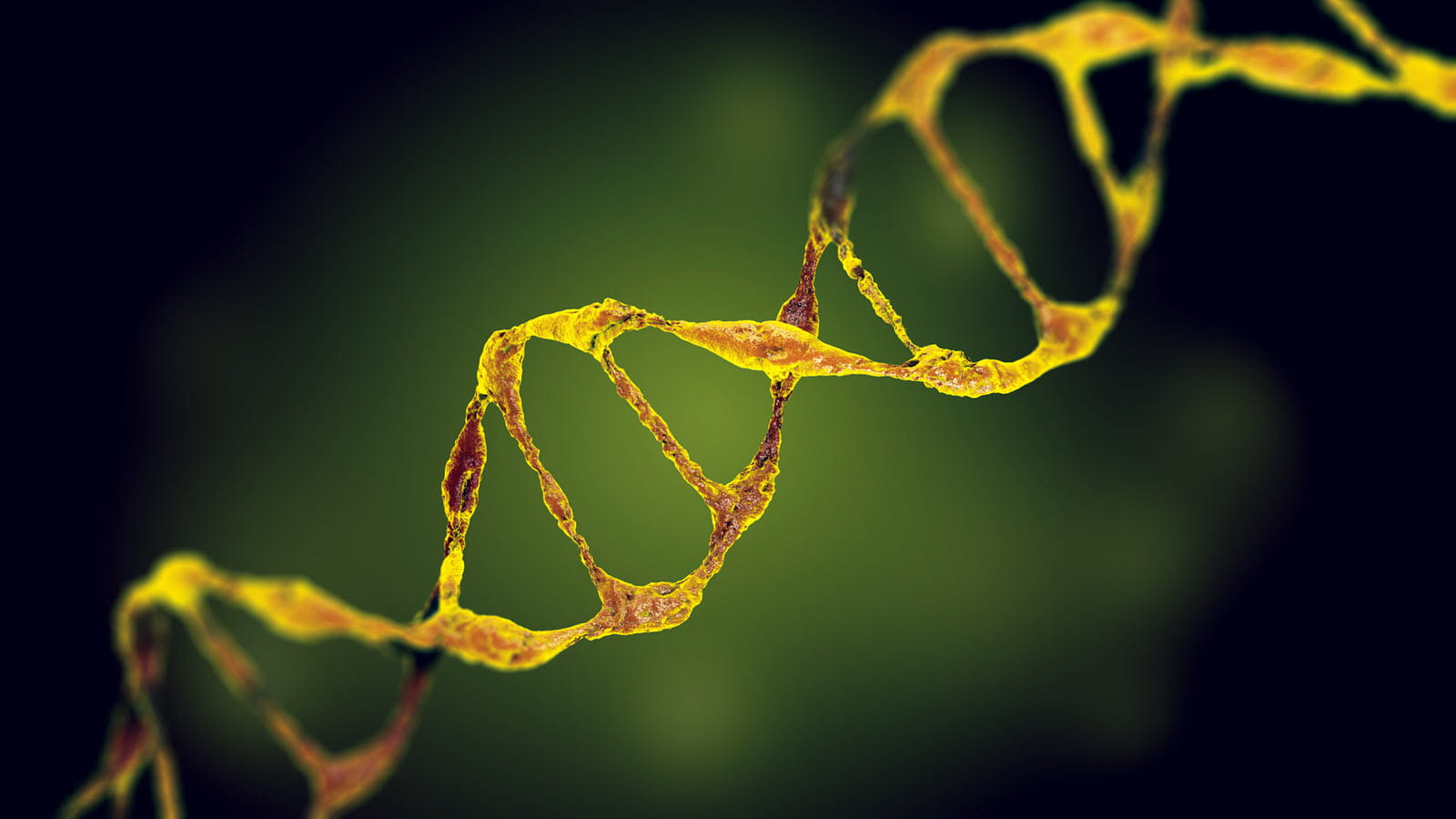 yellow dna strand