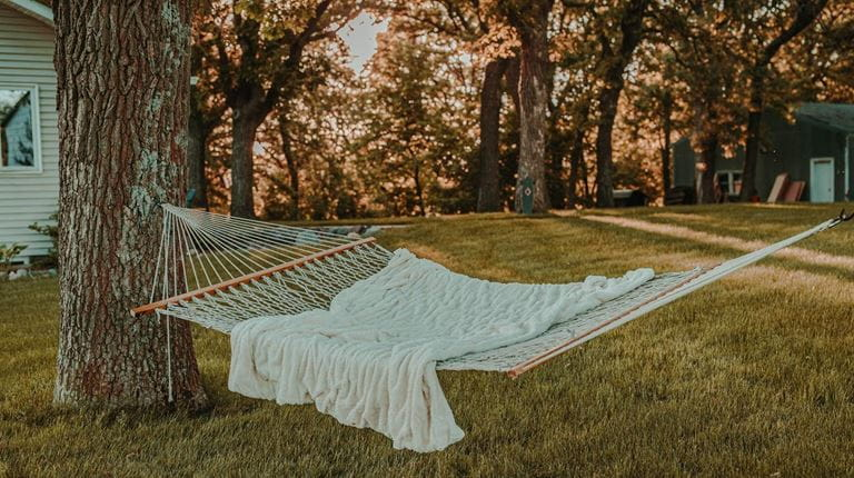 hammock in a backyard