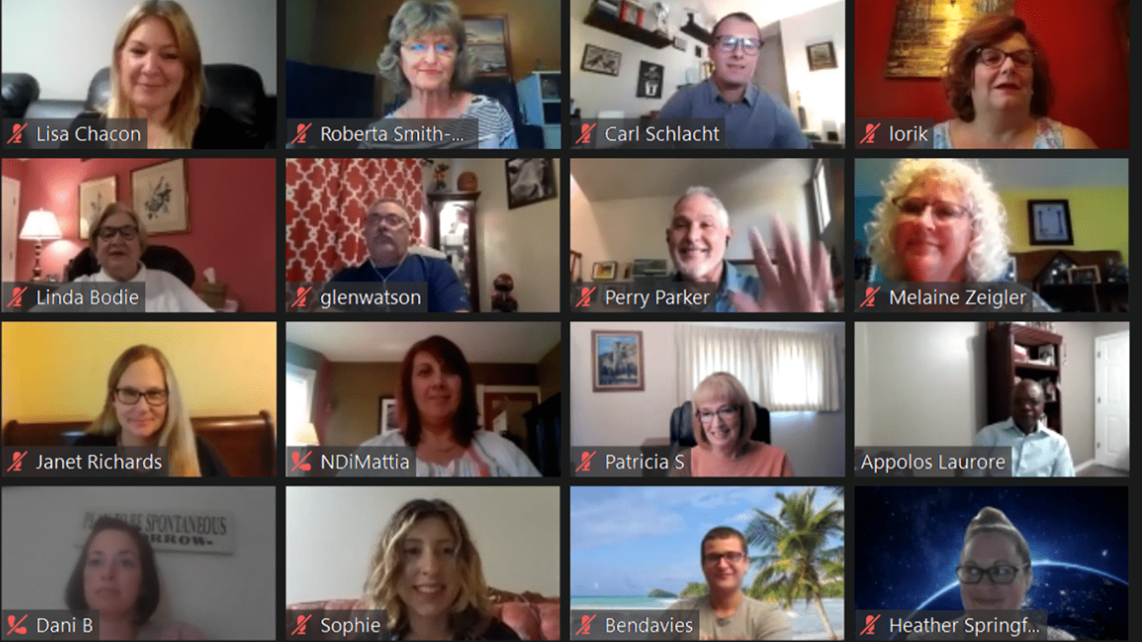 Zoom call screenshot from 2020 patient summit