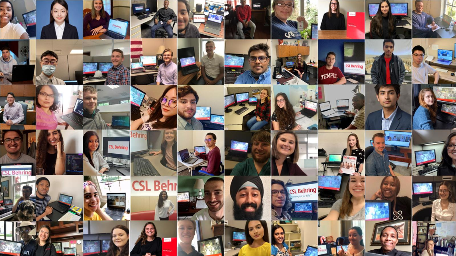 collage of summer 2020 interns on video calls